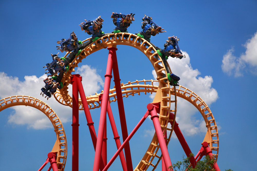 Riding the Career Rollercoaster